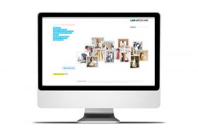 UAB Nursing Case Study / AR 2010 Website